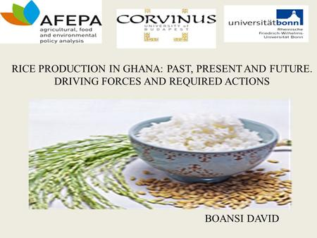 RICE PRODUCTION IN GHANA: PAST, PRESENT AND FUTURE. DRIVING FORCES AND REQUIRED ACTIONS BOANSI DAVID.