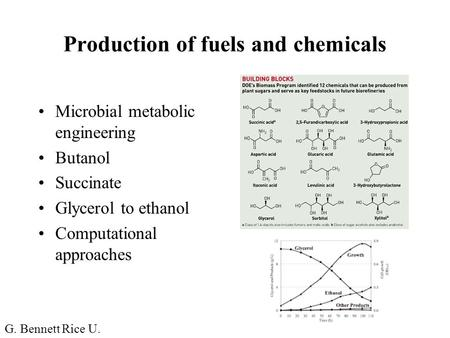 Production of fuels and chemicals Microbial metabolic engineering Butanol Succinate Glycerol to ethanol Computational approaches G. Bennett Rice U.