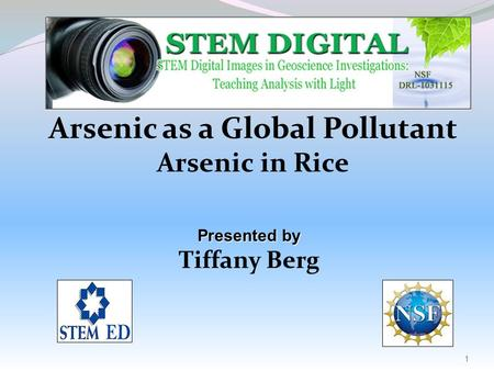 Arsenic as a Global Pollutant Arsenic in Rice Presented by Tiffany Berg 1.