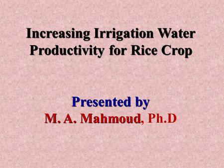 Increasing Irrigation Water Productivity for Rice Crop Presented by M. A. Mahmoud M. A. Mahmoud, Ph.D.