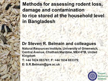 Methods for assessing rodent loss, damage and contamination to rice stored at the household level in Bangladesh Dr Steven R. Belmain and colleagues Natural.