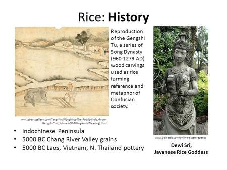 Rice: History Indochinese Peninsula 5000 BC Chang River Valley grains