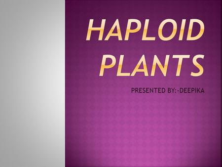 PRESENTED BY:-DEEPIKA Haploids are the plants with a single set of (n) no. of chromosome in its cell. They have only the half set of chromosome.