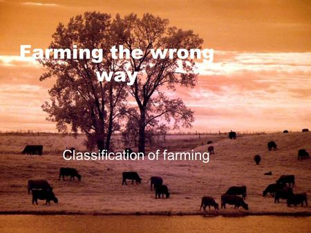 Farming the wrong way Classification of farming. Intensive vs Extensive  Intensive = small farm + large inputs per unit of land  Output per land is.