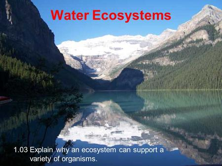 Water Ecosystems 1.03 Explain why an ecosystem can support a variety of organisms.