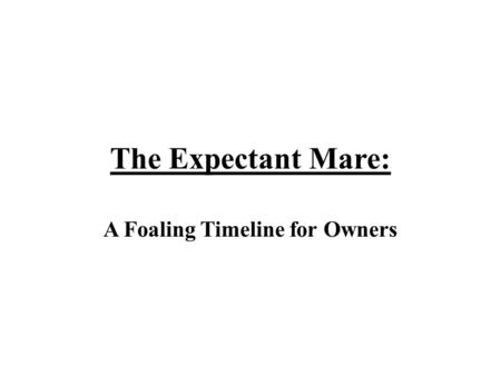 A Foaling Timeline for Owners