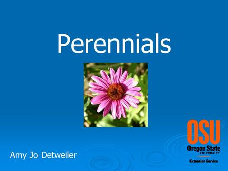 Perennials Amy Jo Detweiler. Perennial plants that live for 2+ years once mature they flower annually.