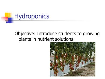 Hydroponics Objective: Introduce students to growing plants in nutrient solutions.