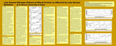 Late Season Nitrogen Enhanced Wheat Protein as Affected by Late Season Moisture. B. D. Brown. University of Idaho Introduction High protein premiums and.