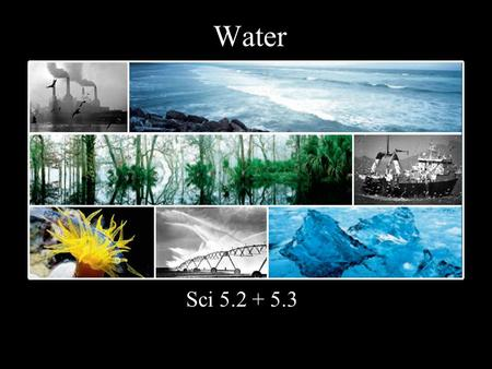 Water Sci 5.2 + 5.3. H 2 O necessary to all life ~70% of your body.