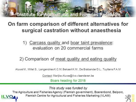 On farm comparison of different alternatives for surgical castration without anaesthesia 1)Carcass quality and boar taint prevalence: evaluation on 20.