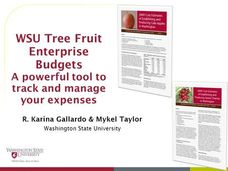 WSU Tree Fruit Enterprise Budgets A powerful tool to track and manage your expenses R. Karina Gallardo & Mykel Taylor Washington State University.