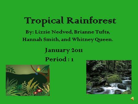 Tropical Rainforest By: Lizzie Nedved, Brianne Tufts, Hannah Smith, and Whitney Queen. January 2011 Period : 1.