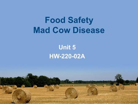 an analysis of the mad cow disease in the world