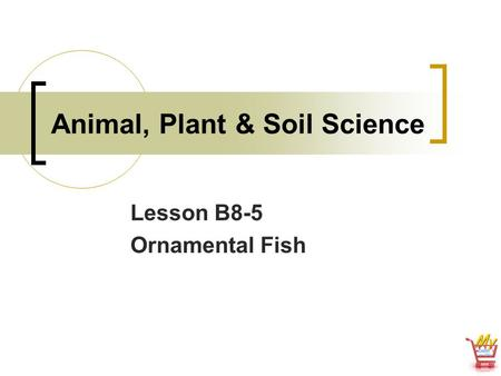Animal, Plant & Soil Science Lesson B8-5 Ornamental Fish.