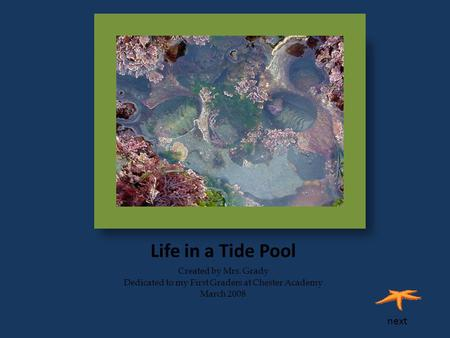 Life in a Tide Pool Created by Mrs. Grady Dedicated to my First Graders at Chester Academy March 2008 next.