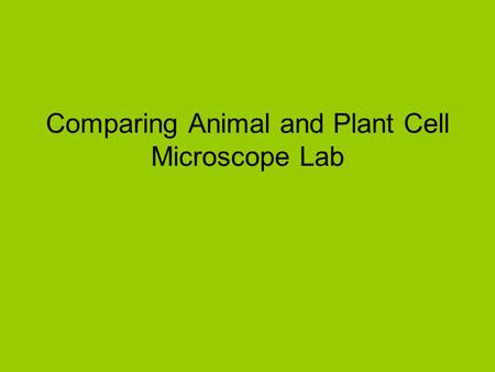 Comparing Animal and Plant Cell Microscope Lab