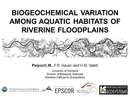 Peipoch, M., F.R. Hauer, and H.M. Valett University of Montana Division of Biological Sciences Montana Institute on Ecosystems BIOGEOCHEMICAL VARIATION.