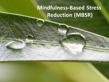 Mindfulness-Based Stress