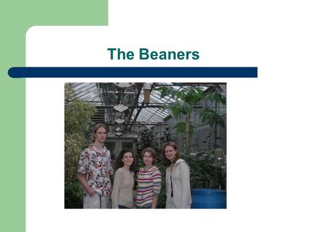 The Beaners. Abstract In our study we are conducting a test with chemical and organic fertilizers. We feel this study plays a large role in the present.