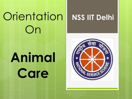 Orientation On Animal Care NSS IIT Delhi. Disclaimer:  No Mobiles!  No Books!  No talking!  This session contains scenes that some viewers may find.