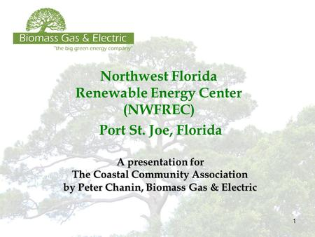 1 Northwest Florida Renewable Energy Center (NWFREC) Port St. Joe, Florida A presentation for The Coastal Community Association by Peter Chanin, Biomass.