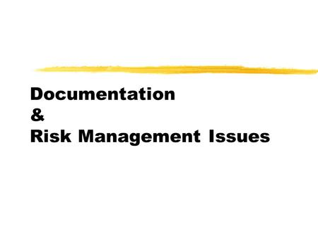 Documentation & Risk Management Issues. Goals and Objectives  Identify Sound Documentation Practices  Discuss Medical Record Documentation Standards.