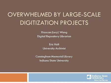Overwhelmed by Large-scale Digitization Projects