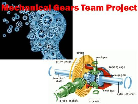 Mechanical Gears Team Project. Teams You will be grouped into teams of four. Each team will have a Team Leader, Engineer, Graphic Designer, and Logistician.