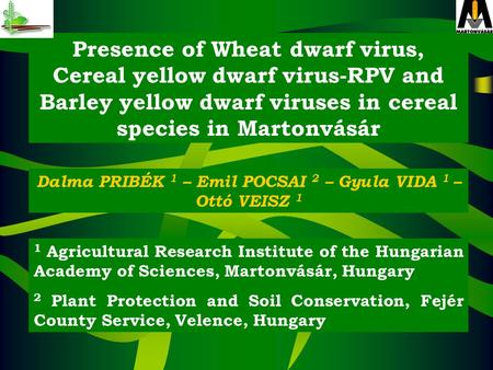 Presence of Wheat dwarf virus, Cereal yellow dwarf virus-RPV and Barley yellow dwarf viruses in cereal species in Martonvásár Dalma PRIBÉK 1 – Emil POCSAI.