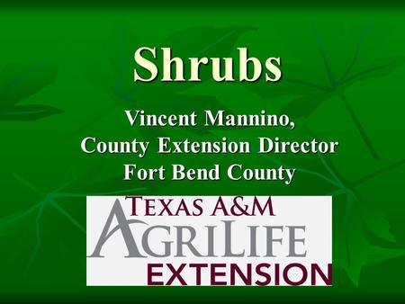 Shrubs Vincent Mannino, County Extension Director Fort Bend County.