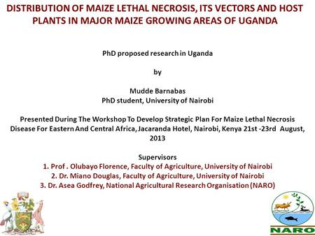 DISTRIBUTION OF MAIZE LETHAL NECROSIS, ITS VECTORS AND HOST PLANTS IN MAJOR MAIZE GROWING AREAS OF UGANDA PhD proposed research in Uganda by Mudde Barnabas.