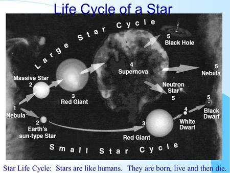 Life Cycle of a Star Star Life Cycle: Stars are like humans. They are born, live and then die.