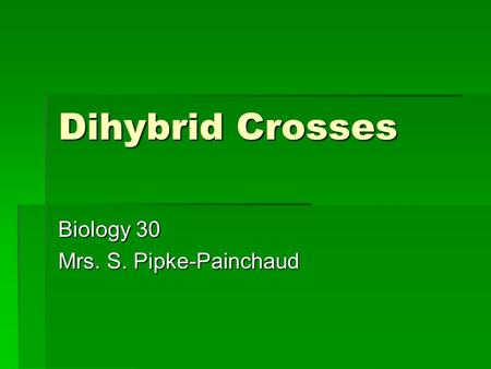 Dihybrid Crosses Biology 30 Mrs. S. Pipke-Painchaud.