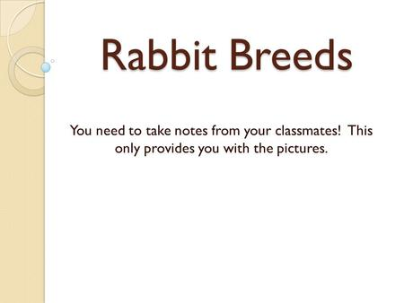 Rabbit Breeds You need to take notes from your classmates! This only provides you with the pictures.