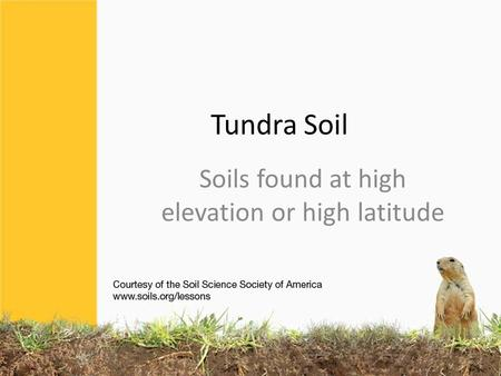 Tundra Soil Soils found at high elevation or high latitude.