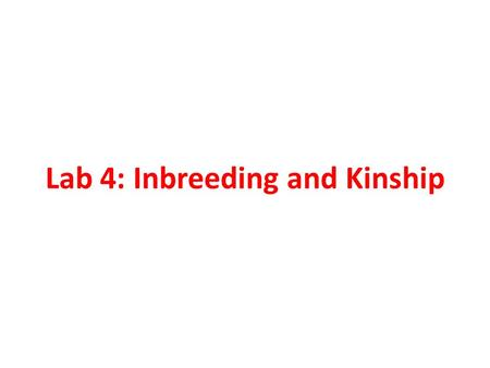 Lab 4: Inbreeding and Kinship. Inbreeding Causes departure from Hardy-Weinburg Equilibrium Reduces heterozygosity Changes genotype frequencies Does not.