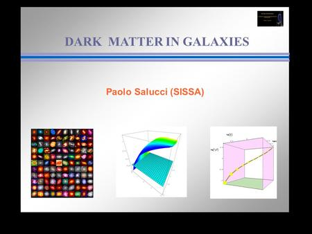 DARK MATTER IN GALAXIES