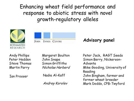Enhancing wheat field performance and response to abiotic stress with novel growth-regulatory alleles Andy Phillips Peter Hedden Steve Thomas Martin Parry.