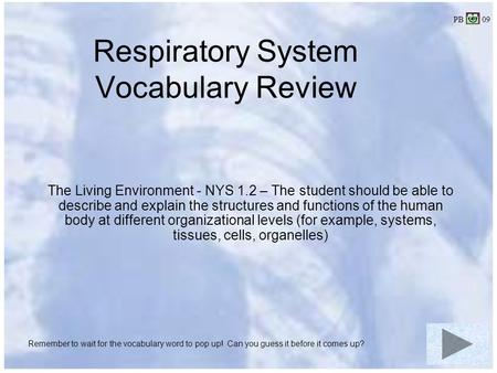 Respiratory System Vocabulary Review The Living Environment - NYS 1.2 – The student should be able to describe and explain the structures and functions.