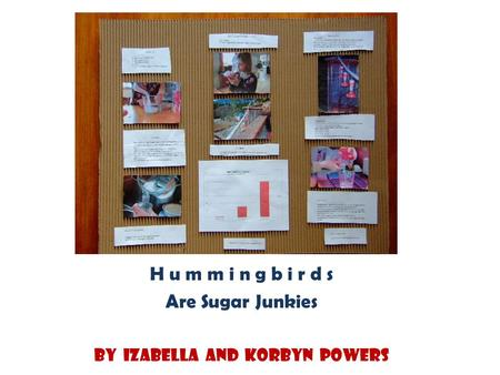 H u m m i n g b i r d s Are Sugar Junkies By Izabella and Korbyn Powers.