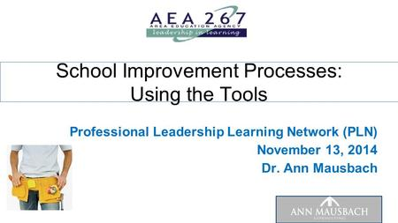Professional Leadership Learning Network (PLN) November 13, 2014 Dr. Ann Mausbach School Improvement Processes: Using the Tools.
