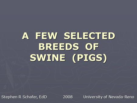 A FEW SELECTED BREEDS OF SWINE (PIGS) Stephen R Schafer, EdD 2008 University of Nevada-Reno.