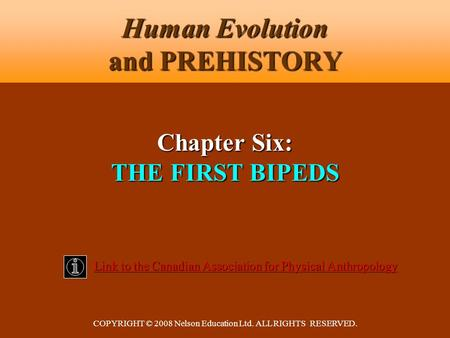 COPYRIGHT © 2008 Nelson Education Ltd. ALL RIGHTS RESERVED. Human Evolution and PREHISTORY Link to the Canadian Association for Physical Anthropology Link.
