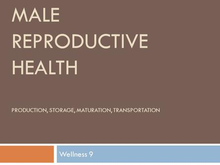 MALE REPRODUCTIVE HEALTH PRODUCTION, STORAGE, MATURATION, TRANSPORTATION Wellness 9.