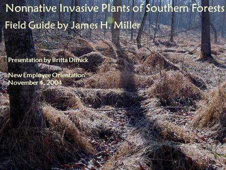 Nonnative Invasive Plants of Southern Forests Field Guide by James H. Miller Presentation by Britta Dimick New Employee Orientation November 4, 2004.