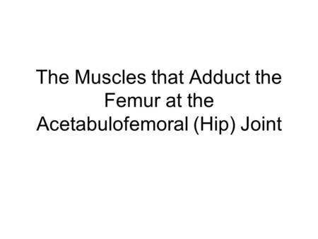 The Muscles that Adduct the Femur at the Acetabulofemoral (Hip) Joint.