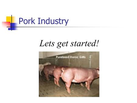 Pork Industry Lets get started!. TERMS TO KNOW Sow- Mature Female pig Boar- Male pig Barrow – castrated male pig Piglet- Young pig Gilt – Immature female.