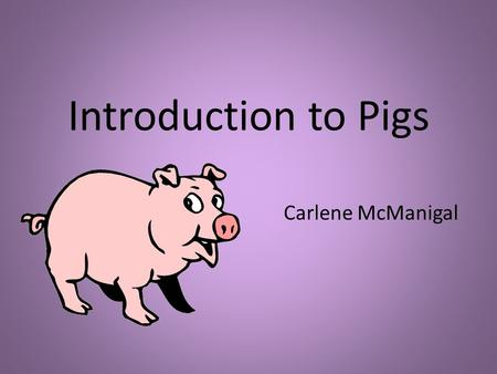 Introduction to Pigs Carlene McManigal. Gender Clarification A female pig who has never given birth to piglets is called a gilt. An unneutered male pig.