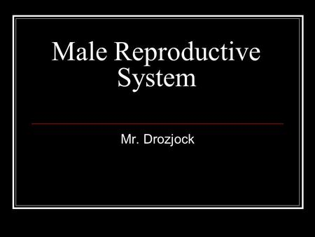 Male Reproductive System Mr. Drozjock. What's it's purpose??? The purpose of the organs of the male reproductive system is to perform the following functions: